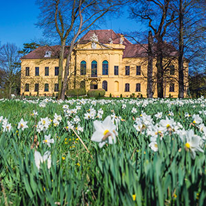 Eckartsau Castle & Last Days of the Habsburg Empire