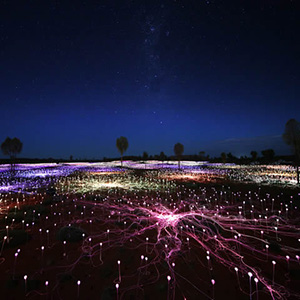 Field of Light Uluru  - Limited Time Special Exhibit