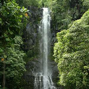 Kohala Waterfalls Adventure