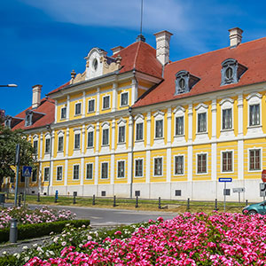 Discover Vukovar with Wine Tasting