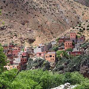 Ourika Valley with Berber Home Visit
