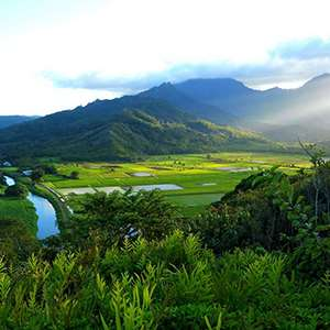 Hanalei Valley Tour