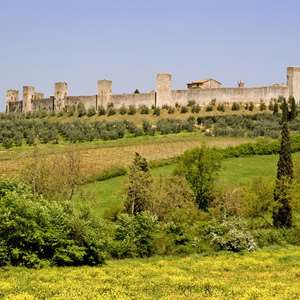 Discover Monteriggioni with Dinner at a Tuscan Farmhouse