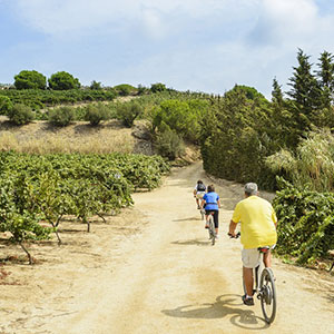 Barcelona eBike Ride with Winery Visit