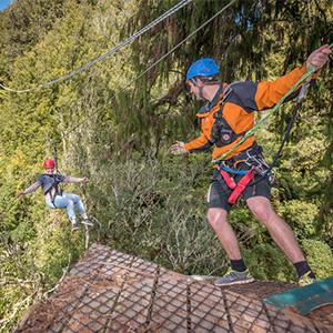 Rotorua Zipline and Canopy Tour