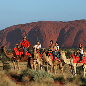 Ayers Rock Camel Experience