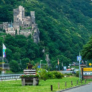 Biking along the Rhine