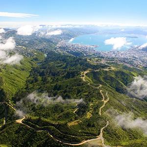 Zealandia By Day