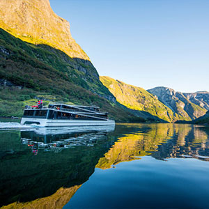 Fjord Cruise and Undredal Village