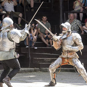 Medieval Knights Tournament