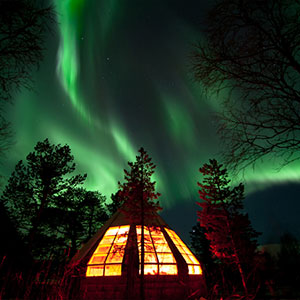 Northern Lights, Huskies and Traditional Bacalao Dinner