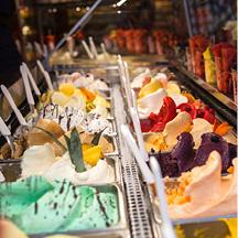 PEDAL: Firenze in Bicicletta