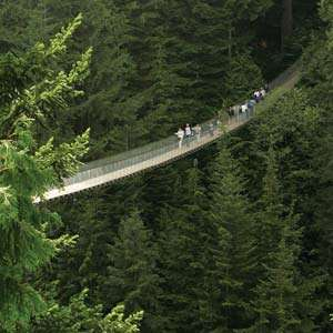Grouse Mountain & Capilano Suspension Bridge