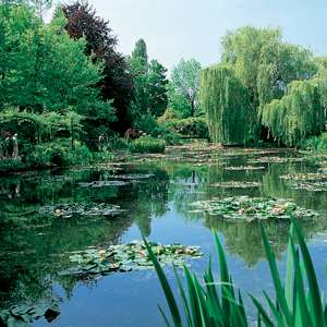 Claude Monet's Giverny & Palace of Versailles