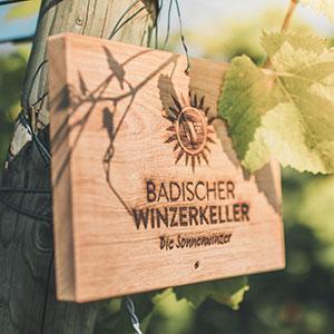 Wine Tasting at Badischer Winzerkeller