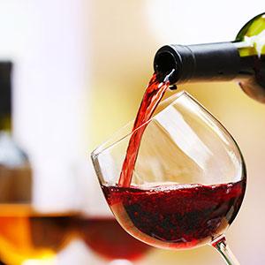 Etyek Wine Tasting