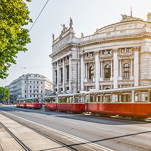 Vienna on Two Wheels: City Highlights