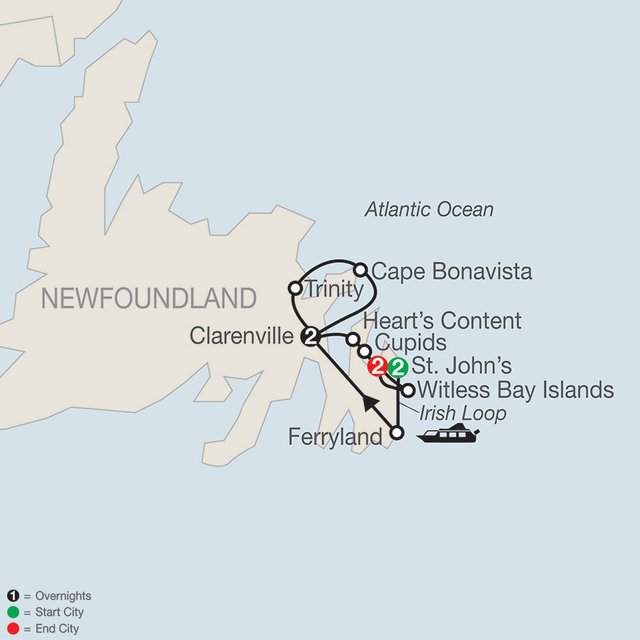 Colorful Newfoundland (CN2019)