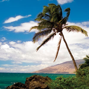 Cruising Hawaii's Paradise With Sheraton Princess Kaiulani (EN)