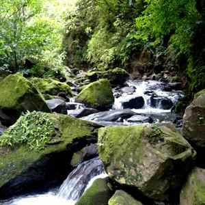 Costa Rica Wonders With Guanacaste (ILAH)