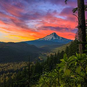 Oregon's Coast, Cascades & Craft Beers (NB)