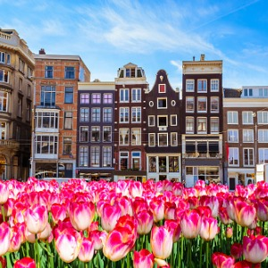 Tulip Time Cruise with 3 Nights in Paris for Garden & Nature Lovers