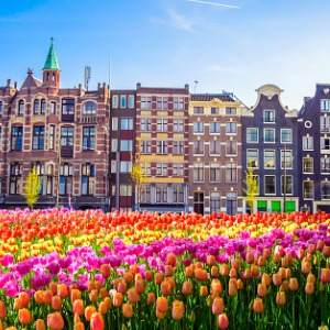 Grand Tulip Cruise of Holland & Belgium