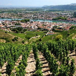 Burgundy & Provence with 1 Night in Marseille (Southbound)