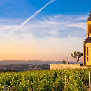 Grand France for Wine Lovers – Cruise Only