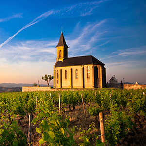 Grand France with 1 Night in Marseille for Wine Lovers (Northbound)