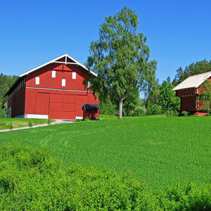 Scenic Norway (ZQ)